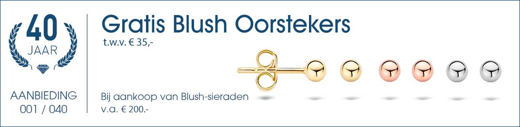 001 / 040 - Blush Oorsieraden