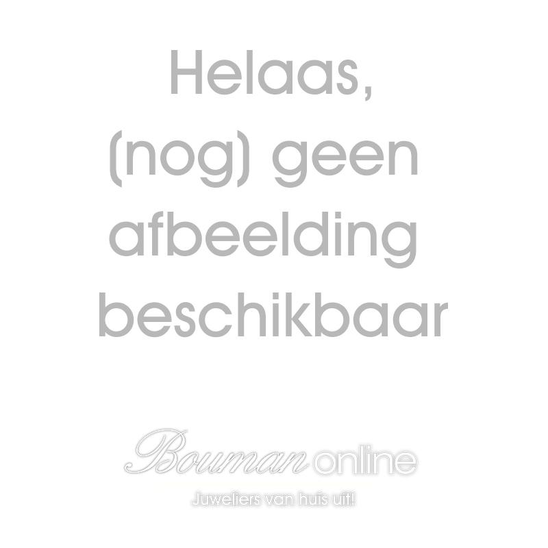 """Miss Spring 14 karaats Witgouden Oorsieraden """"Disc met Saffier"""""""